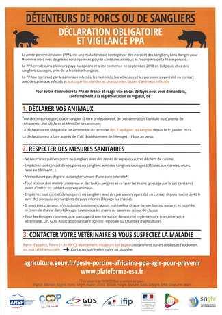 DECLARATION OBLIGATOIRE Porcs / Sangliers